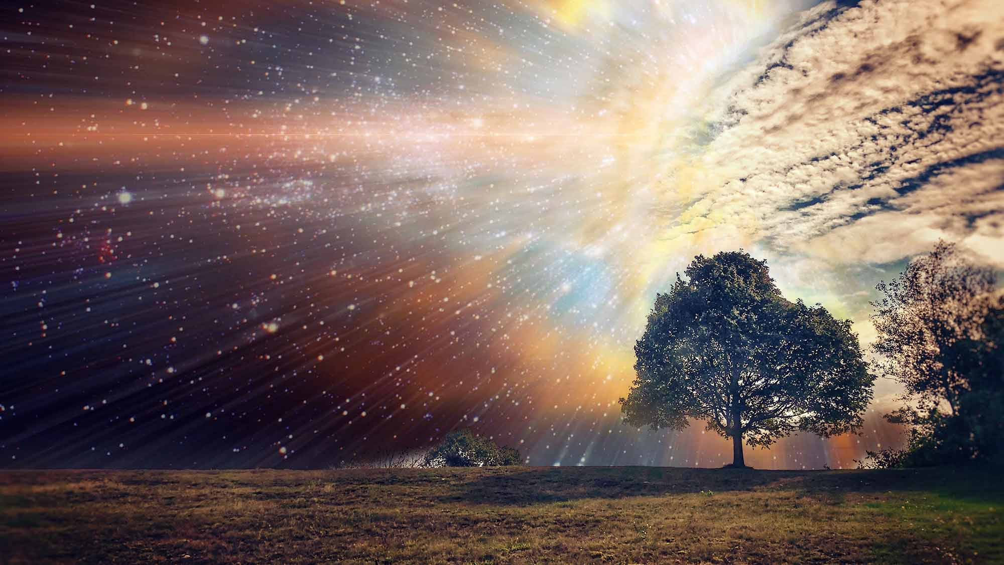 Surreal sky background to tree in field
